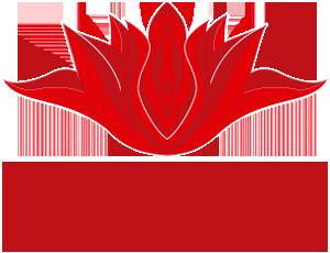 Curso de Pompoarismo Feminino e Masculino - Nany Maravilha